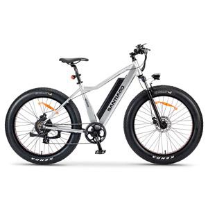 The Slane Santiago E-Bike in Silver